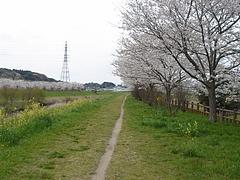 ブログ用 028