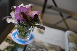 ナチュラルガーデンのお花