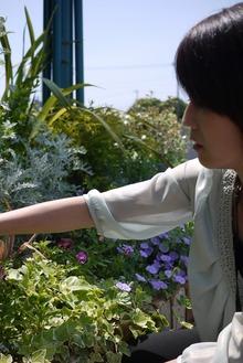 花殻摘み@トゥールビヨンさん