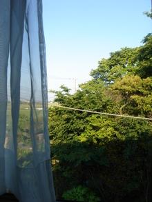 2010年5月31日ぐるはしの部屋の西側窓