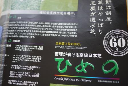 高級日本芝ひめの