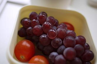 2010初葡萄