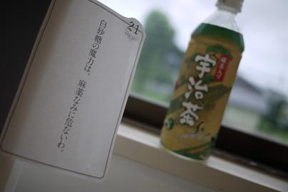 京都 宇治茶