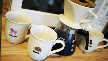 groom CAFE