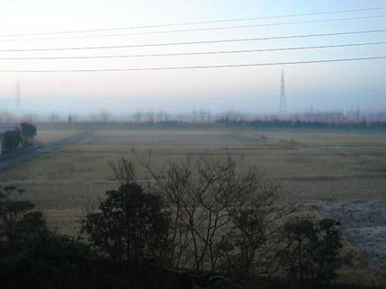 2010冬 初霜