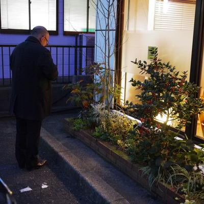 冬の夜花壇