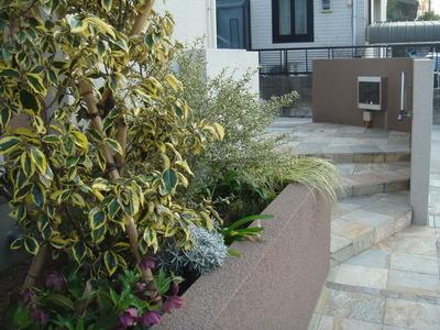 花壇の植栽