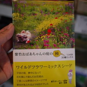 紫竹おばあちゃんの庭の種