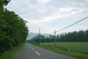 北海道ののどかな道