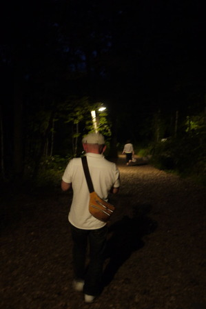 真っ暗な森の中