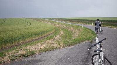 美瑛の丘を自転車で