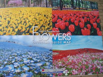 FLOWERS ガイドマップ