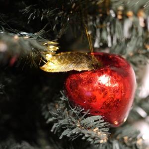 クリスマスツリー  リンゴの飾り