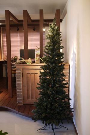 2011-11-04 クリスマスツリーの飾り付け ビフォー