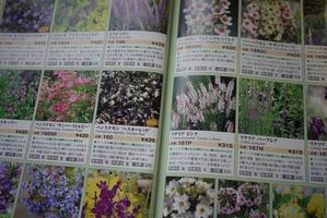 宿根草カタログ