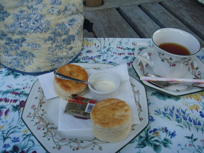 スコーン&紅茶