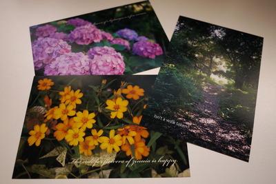 夏のオリジナルポストカードたち