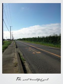 のどかな田舎道♪