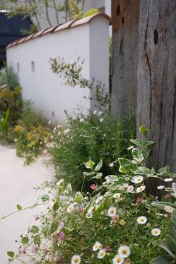 お花いっぱい♪フレンチナチュラルガーデン